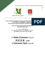 Forum Chine-Europe Texto Comun