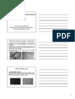 ECV 2013-13c Osteocitos