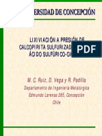 P01 MARIA C. RUIZ.pdf