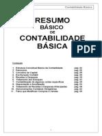 contabilidadebsicaresumo
