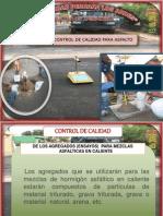 CONTROLES DE CALIDAD EN OBRA.pptx