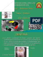 Dentina MgDiaz