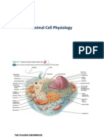 Fishew1 Cell Physiology