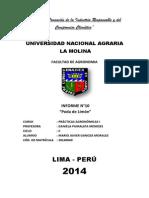 Informe Sobre Poda de Limon - Practicas Agronomicas I UNALM