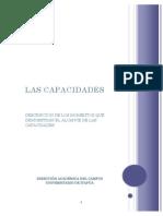 Capacidades e Indicadores de evaluacion.