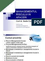 Managementul Riscului in Afaceri