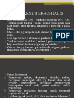 CIDERA PLEXUS BRACHIALIS.ppt