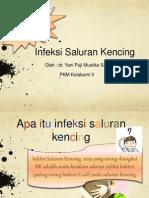 penyuluhan isk 26-11-2014.ppt