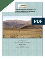 levan-obser-EIA-proyecto-exploracion-cahuina.pdf