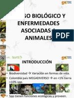 ANIMALES PELIGROSOS PARA EL HOMBRE EN COLOMBIA ARL.pptx