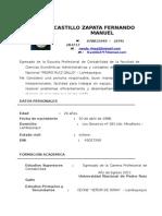 Cv Castillo