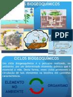 Ciclos-biogeoquimicos Carbono e Oxigenio