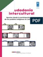 PNUD Ciudadanía Intercultural