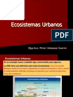 metabolismo Urbano3-2