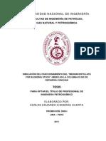 cisneros_hc.pdf