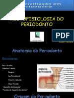 Histologia Do Periodonto
