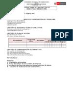 UNMSM Ciclo II Proyecto Estructura 2014.doc