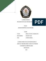 ReisaNovitaMarpaung-21030113120014