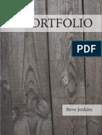 Steve Jenkins Portfolio