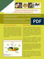 Potenc Export Prodorga
