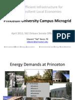 Princeton University Microgrid Design