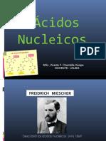 Acidos Nucleicos - Adn - Copia (2)