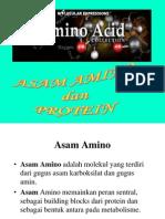1. Asam Amino