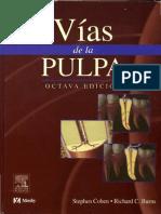 Endodoncia - Vías de La Pulpa_2