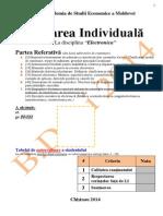 Lucrarea Individuala.Tehnologii Informationale.