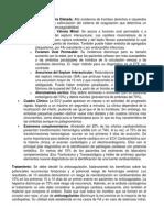 Emn Puc Cardiologia PDF 21