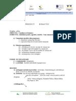 Comunicare - proiect de lectie.doc