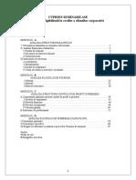 Analiza Eligibilitatii La Credite a Clientilor Corporativi