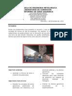 Informe de Serie Galvanica Formato Listo Para Imprimir