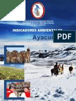 INDICADORES AMBIENTALES AYACUCHO.pdf