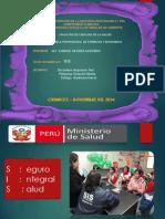 Exposició_Seguros Del Perú-SIS-. Grupo 05