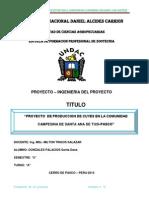 Produccion de Cuyes en Santa Aan de Tusi