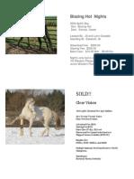 2014 nlsaf auction continuous page