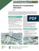 nz-freshwater-invertebrates-lowres