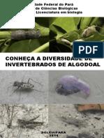 Cartilha sobre a biodiversidade de invertebrados de algodoal/PA