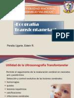 Ecografia transfontanelar 14