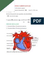 Clase de Cardio
