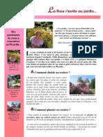 La Rose s'invite Au Jardin…