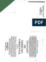 239642236 Tratado de Derecho Ambiental Dino Bellorio Clabot Eas (1)