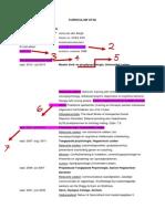 PDF CV Jona Van Den Bergh (3)
