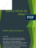 Boletin Oficila de Mineria