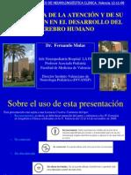 FdoMulas2008