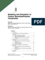 Chapter Nanotube Full Definition