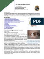 Oftalmología PUC eunacom