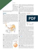 Physics I Problems (105).pdf