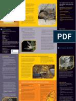 Bats_in_Houses_leaflet.pdf